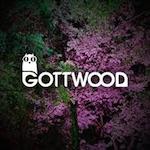 Gottwood Festival at Carreglwyd Wood 2018