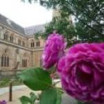 Goulburn Rose Festival 2022