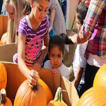 Great Downtown Pumpkin Festival 2019