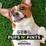 GROwynwood: Pups N' Pints 2021