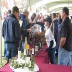 Harvest Wine Festival 2021