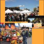 Hayward Fall Festival 2016