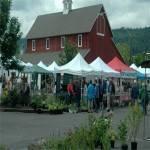 Issaquah Farmers Market 2020