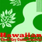 Kauai Slack Key Guitar Festival 2018