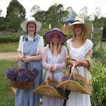 Lavender Harvest Festival 2019