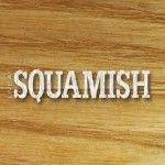 Live At Squamish 2020