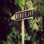 Lost In Wonderland 2020