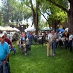 Madison Valley Arts Festival 2019