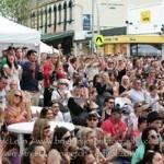 Main Street Mornington Festival 2020