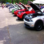 Mustangs on the Mountain 2019
