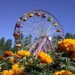 Nevada County Fair 2019