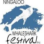 Ningaloo Whaleshark Festival 2019