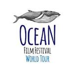 Ocean Festival 2020