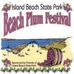 Plum Festival 2020