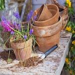Portland Spring Home and Garden Show 2017
