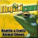Reptiday Springfield Reptile & Exotic Animal Show 2019
