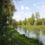 River Side 2020