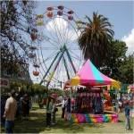Selma Raisin Festival 2020