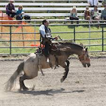 Southeastern Ranch Rodeo 2022