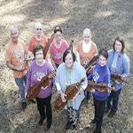 Southern Strings Dulcimer Festival and deep South Champ 2017