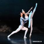 Swan Lake Moscow Festival Ballet 2017