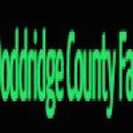 The Doddridge County Fair 2019