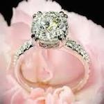 The Engagement Bridal Show 2020