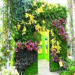 The New York Botanical Garden's Spring Festival Series 2019