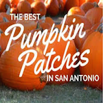 The Pumpkin Patch San Antonio 2016