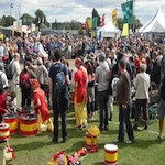 Towersey Festival 2017