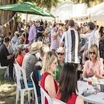 Wairarapa Wines Harvest Festival 2019
