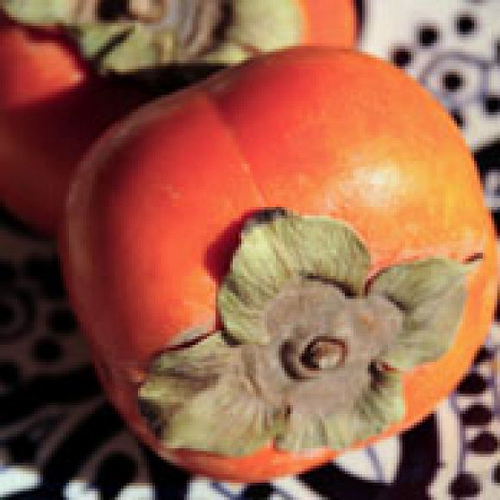 Margaret Griffiths' Persimmon Pudding