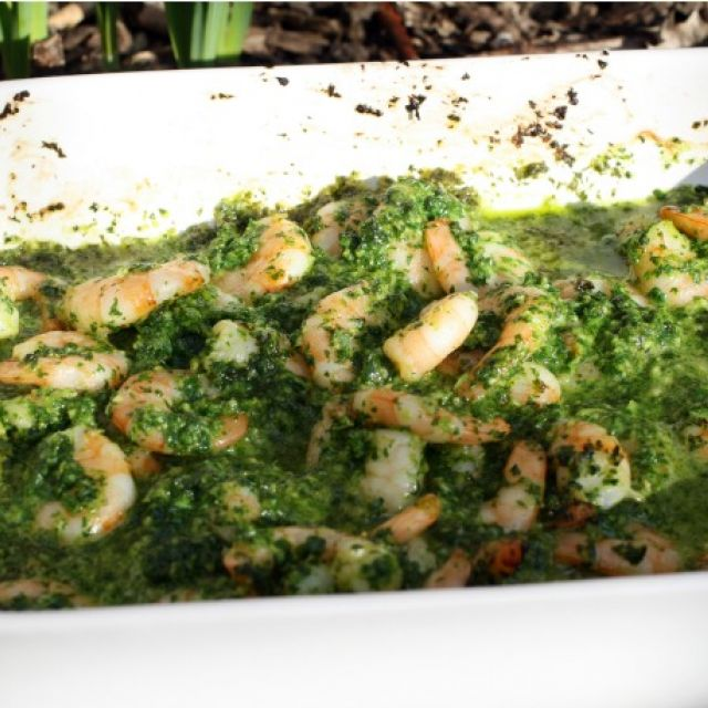 Shrimp with Green Sauce