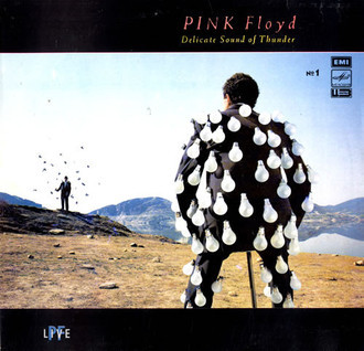 Pink Floyd - Delicate Sound of Thunder LP duplo (ver fotos)