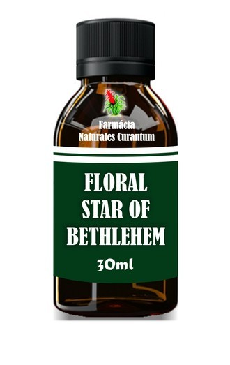 Floral para o Desespero - Star of Bethlehem 30ml