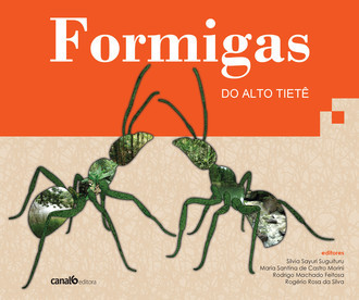 Formigas do Alto Tietê
