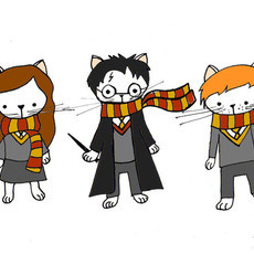(GRAVURA) CAT POTTER