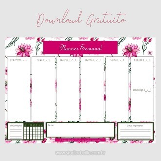 Planner Semanal (Download Gratuito)