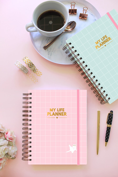 Combo 2 My Life Planners 2021