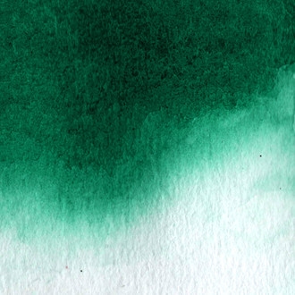 Aquarela Hookers Green