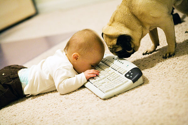 avery typing with Commodus