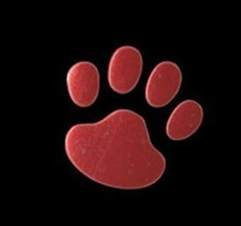 Golden Cute 3D Paw Decal Sticker <em>Car</em> Bike Emblem logo Rear Front kIT pART Doors