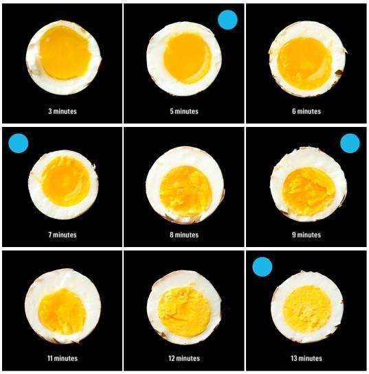 Boiling Egg Graphic