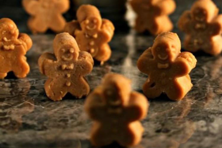 GingerbreadFudgeMen