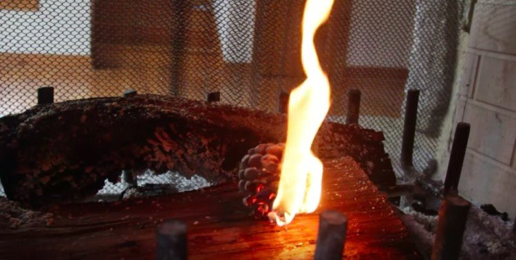 winter pine cone firestarter