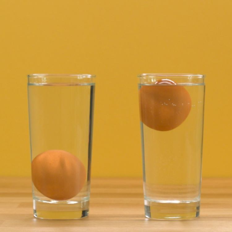 Test egg freshness by floating in glass of water