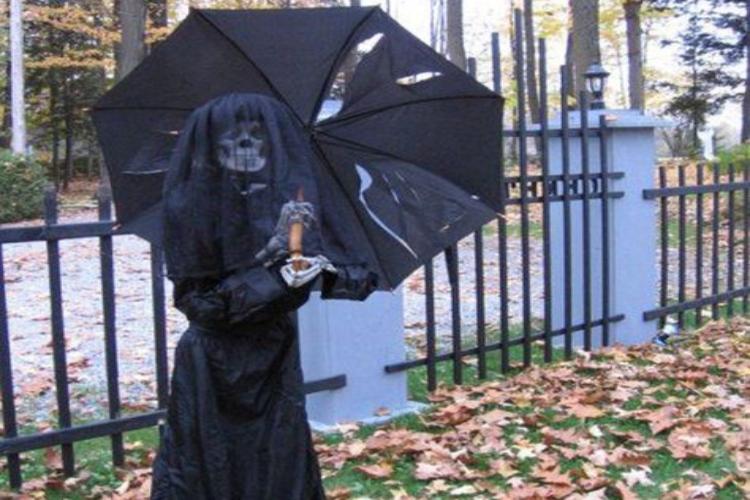 skeleton umbrella