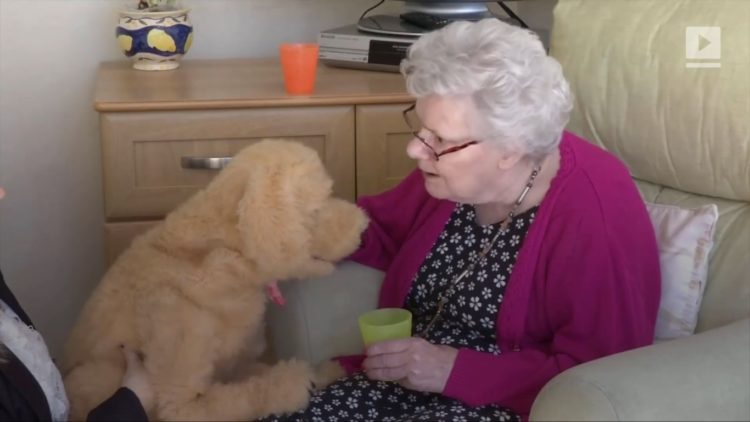 Image of robotic dog and elderly woman