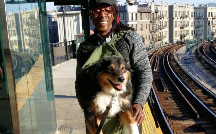 dog subway 11