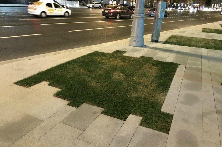 fail grass sidewalk